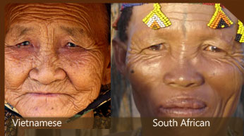Chinese and South African features compared