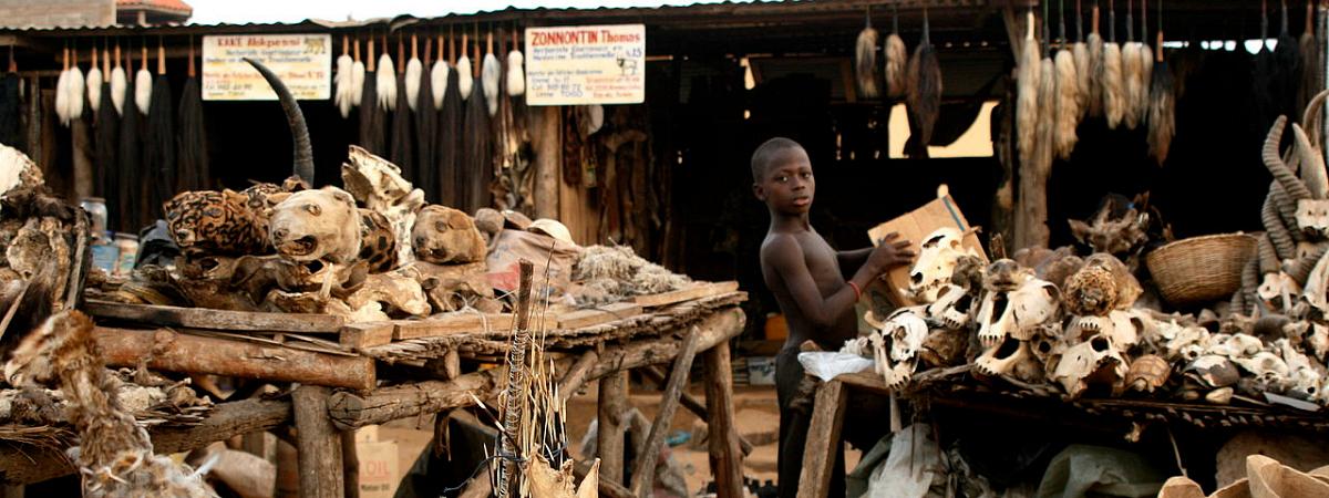 Voodoo Fetish Market