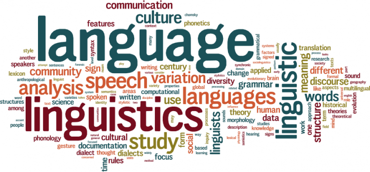 Linguistics For A New African Reality