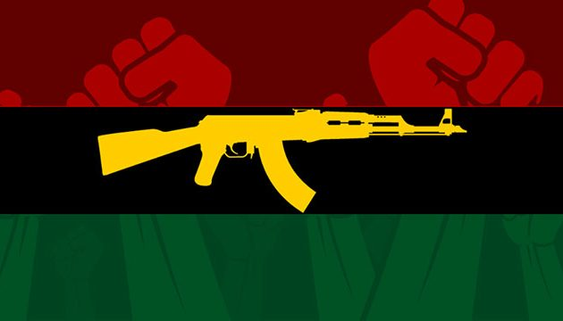 The Art of Revolution: A Critical Review of African Liberation